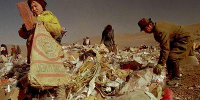 Lo que deben de saber sobre el desperdicio de alimentos en el mundo Foto:Getty Images
