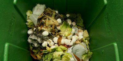 La seguridad alimentaria es una preocupación grave en numerosas zonas del mundo en desarrollo Foto:Getty Images