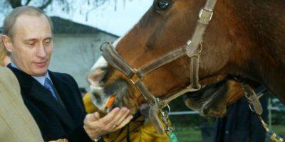También le agrada la equitación Foto:Getty Images