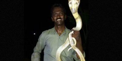 Es famoso por rescatar a grandes serpientes en su país. Foto:vía Facebook
