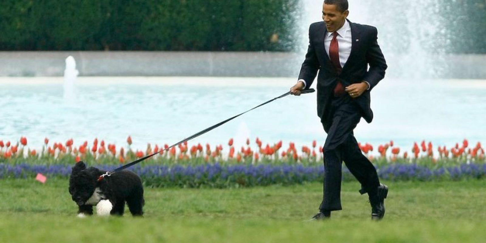 Las mascotas de los líderes mundiales Foto:Getty Images