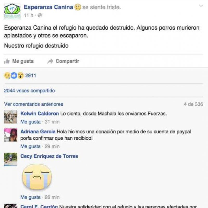 El refugio de la Fundación Esperanza Canina quedó destruido por el terremoto. Foto:Facebook