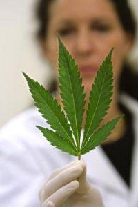Hasta 2010, se estima que 230 millones de personas consumieron una droga ilícita Foto:Getty Images