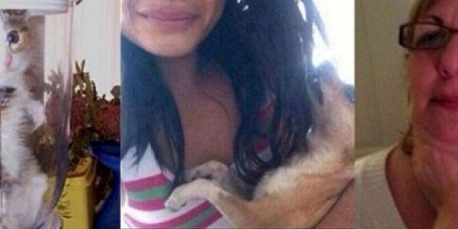 """Una fan de One Direction dijo que mató a su chihuahua porque la banda no le respondió sus peticiones de seguirla en Twitter. Solo decía """"Síganme o mato a mi perro"""". Luego le escribió a Lyam Payne """"Sígueme. Mi perro murió"""" y mostraba la foto de un perro muerto. Pero todo fue una farsa, ya que las fotos eran tomadas de Internet. Sin embargo, muchos quieren darle una lección: ya hay 3 mil firmas para que ella vaya a prisión. Foto:vía Oddee"""