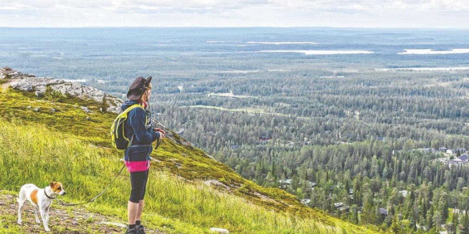 1- Finlandia da cátedra desde Europa. El gobierno finlandés firmó un compromiso social para lograr que la cantidad de carbono que se produce allí no exceda la capacidad de carga de la naturaleza para el año 2050. Según el EPI, se trata de una visión repleta de metas viables e indicadores medibles de desarrollo sostenible. Por otro lado, Finlandia tiene como objetivo consumir 38 % de su energía total procedente de fuentes renovables para el año 2020. Finlandia ocupa el primer lugar en Europa y todo el mundo.
