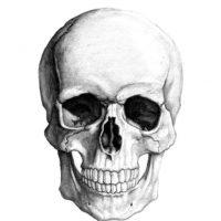 Estas producen la destrucción del tejido facial, haciendo que el rostro de la persona se vea cadavérico y rojo. También destruye las manos. Foto:vía Flickr