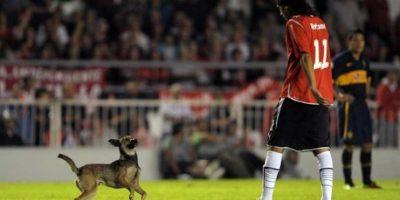 3. En 2013, este perro invadió la cancha durante un encuentro entre Boca Júniors y Argentinos. Foto:AP