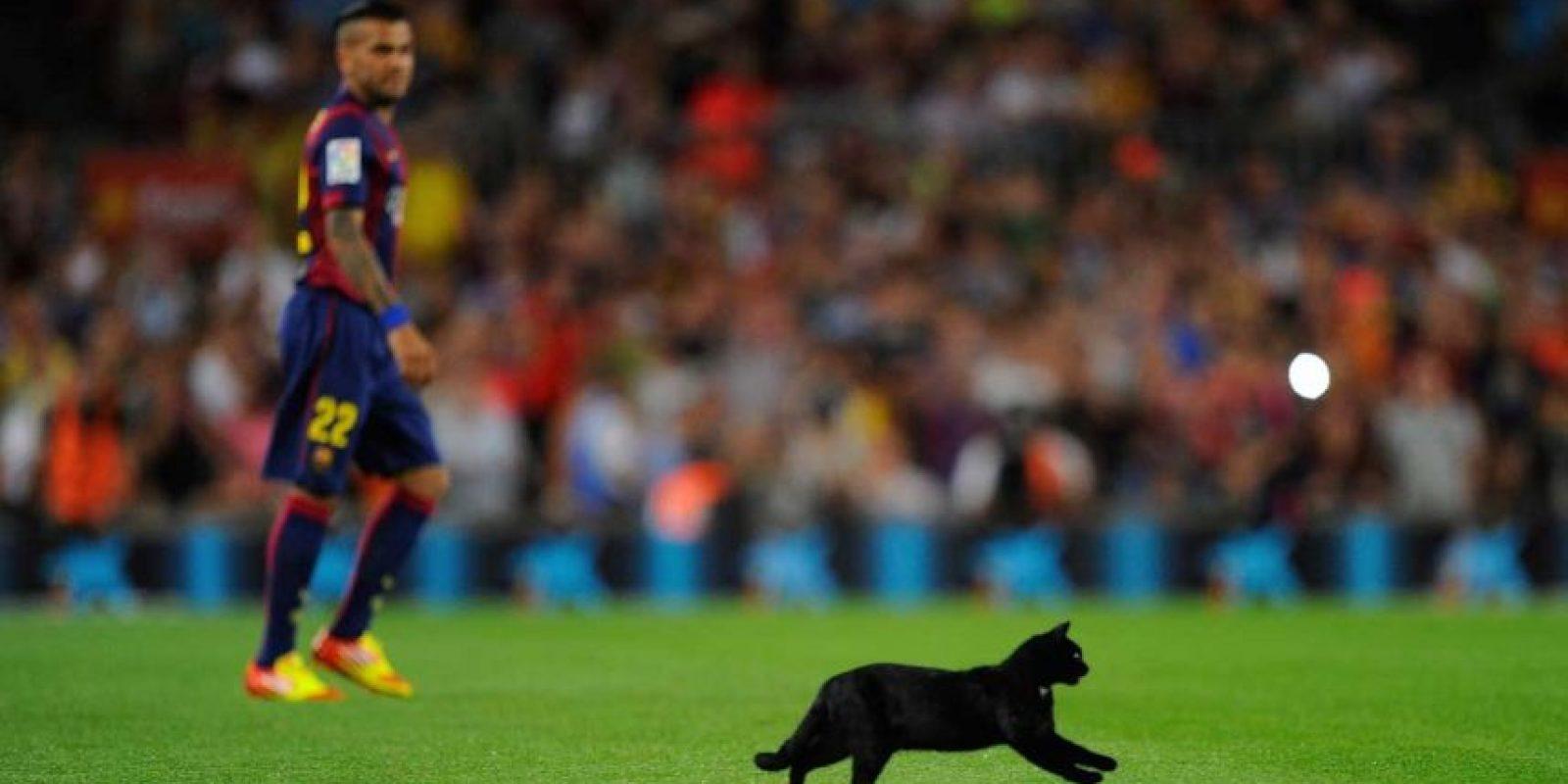 4. Un gato negro invadió la cancha durante el Barcelona vs. Elche de la campaña 2014-2015. Foto:Getty Images
