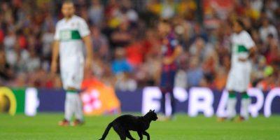 """Muchos lo vieron como mal augurio, pero fue esa temporada en que el Barça ganó el """"triplete"""". Foto:Getty Images"""