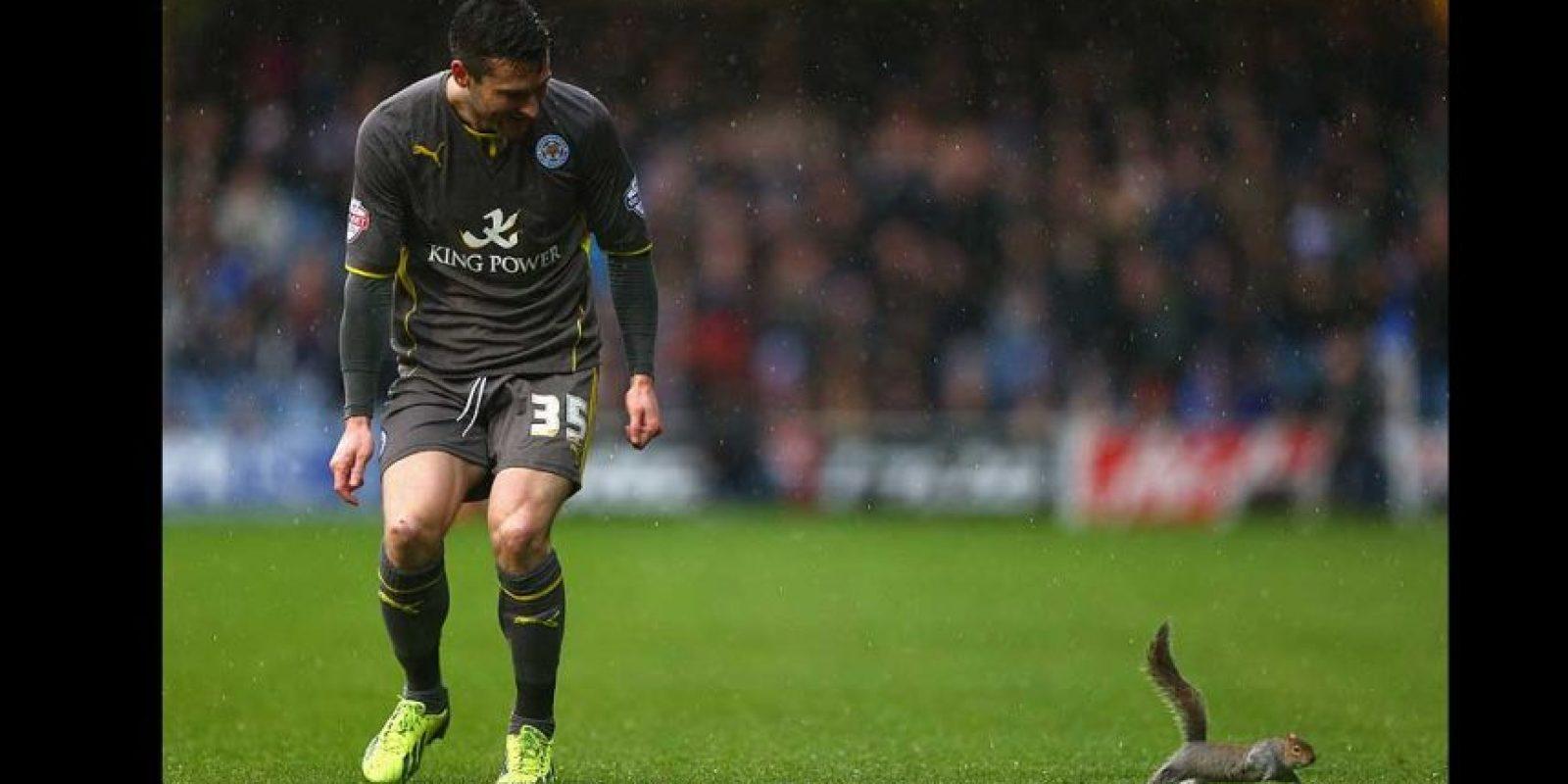 "Que pisó el césped mientras ""The Foxes"" enfrentaban al QPR en 2013. Foto:Getty Images"