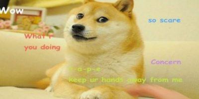 """Los """"memes"""" son de las más viejas creaciones en Internet. Foto:Tumblr"""