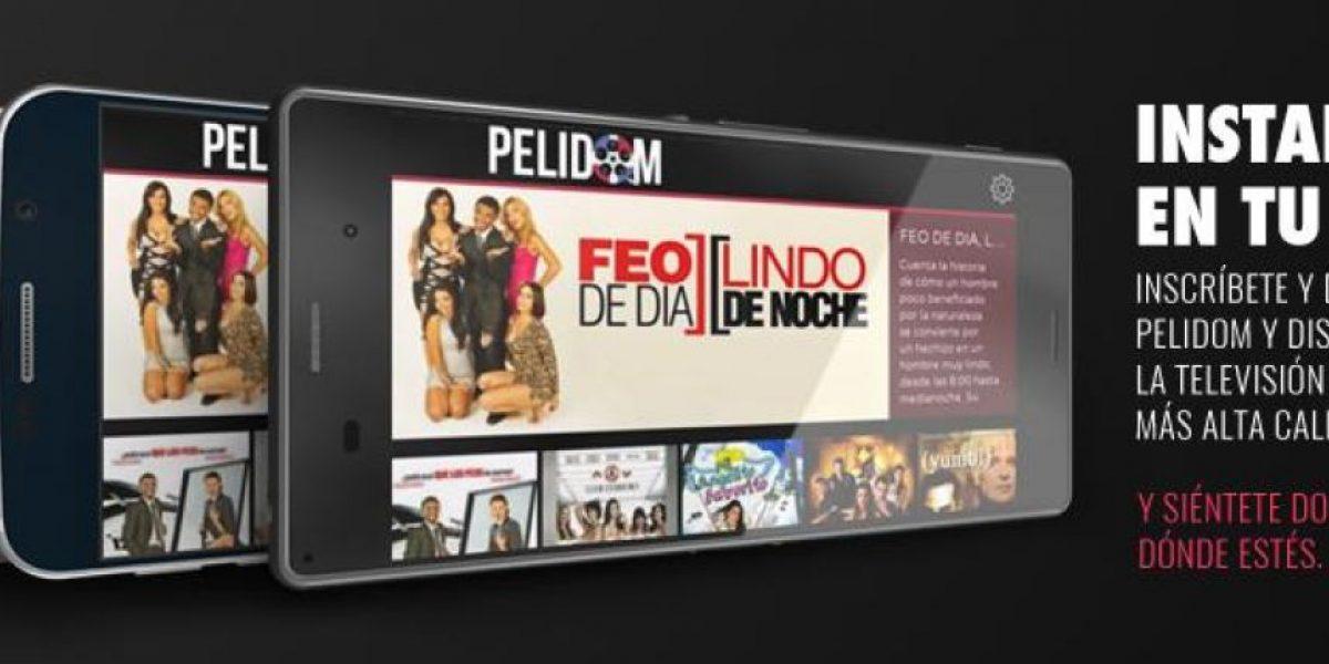 """Aplicación """"Pelidom"""" transmitirá elecciones presidenciales en vivo"""