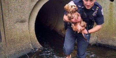 Hombre queda atrapado en llamas y policía le salva la vida
