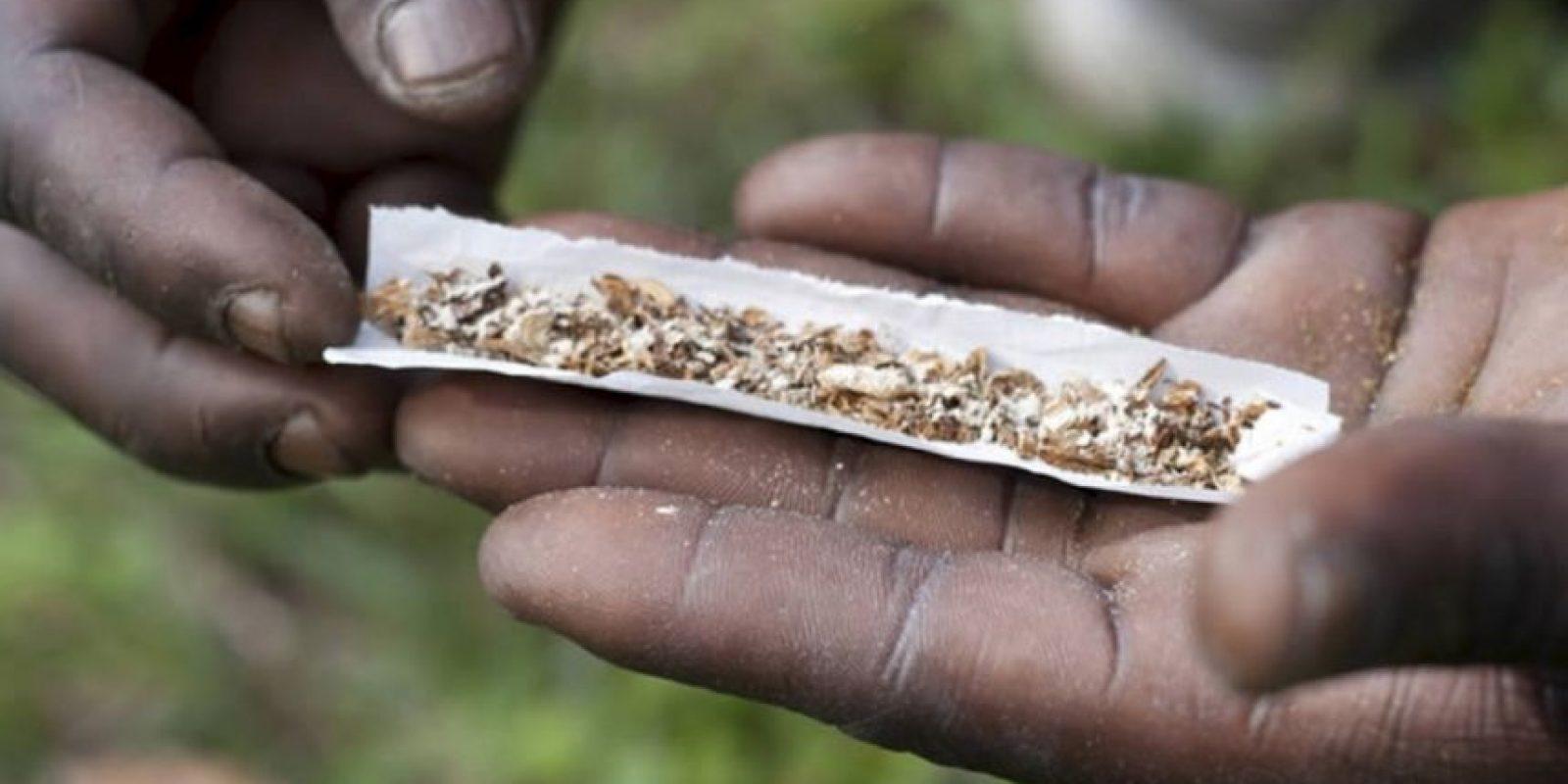 La droga es altamente adictiva y puede causar graves problemas de salud, tales como hemorragias internas, úlceras de estómago y finalmente la muerte. Foto:vía Wikipedia