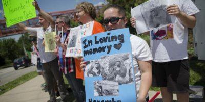 Mostraron su cariño por el mamífero Foto:AP