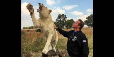 Arnold Schwarzenegger ha sido un fiel defensor de los animales. Foto:Instagram / Schwarzenegger