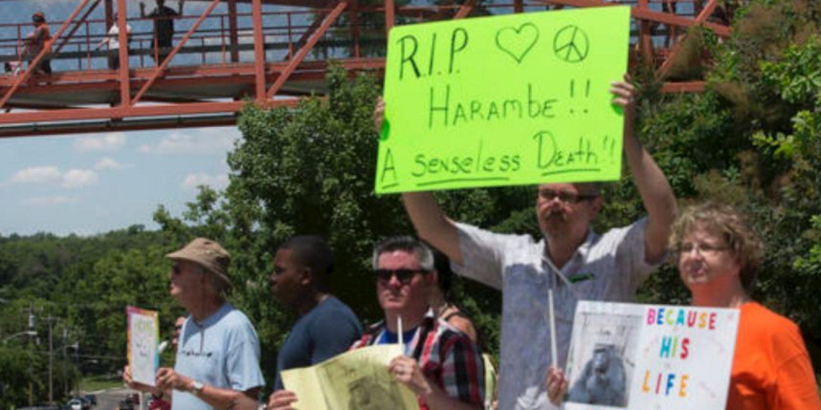 Muchos querían que el niño muriera. Foto:vía AP