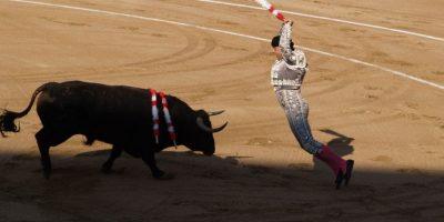 """Tras la muerte de uno de sus más grandes toreros, Rodolfo Rodríguez """"El Pana"""" Foto:PIXABAY"""