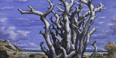 Un paso más para la internacionalización del arte local: la galería Lyle O. Reitzel abre en Nueva York