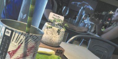 Almuerzo en KYU en WynWood. Foto:Fuente externa
