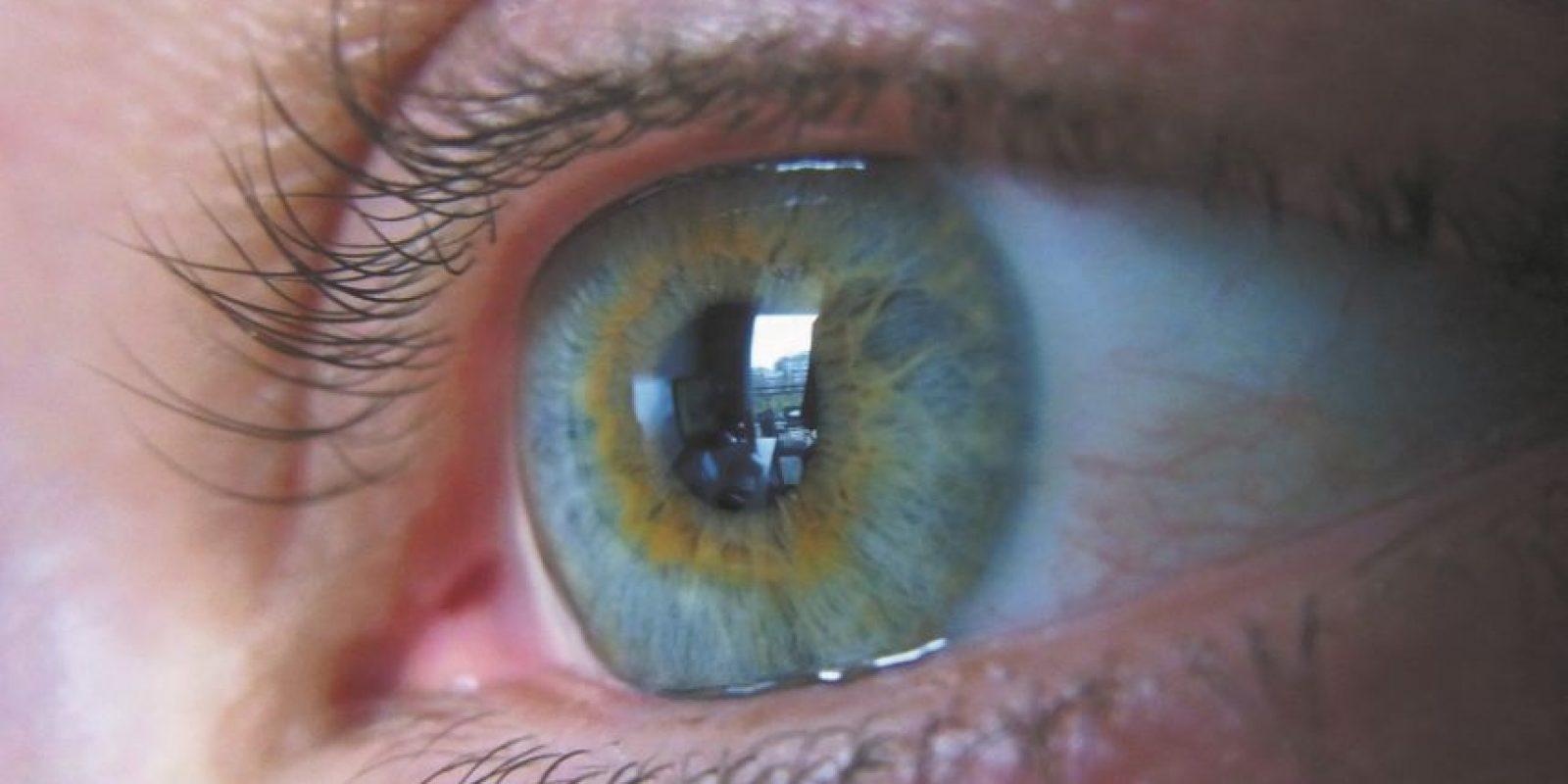 1- Alteraciones visuales agudas. La visión borrosa o ceguera de instalación súbita, en uno o ambos ojos, son síntomas de esta enfermedad autoinmune que afecta al sistema nervioso central. Foto:Fuente externa