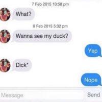 Él: Quieres ver mi pato? Ella: Sí Él: Mi pene* (seguro el autocorrector lo cambió al principio) Ella: Nope Foto:Instagram/byefelipe
