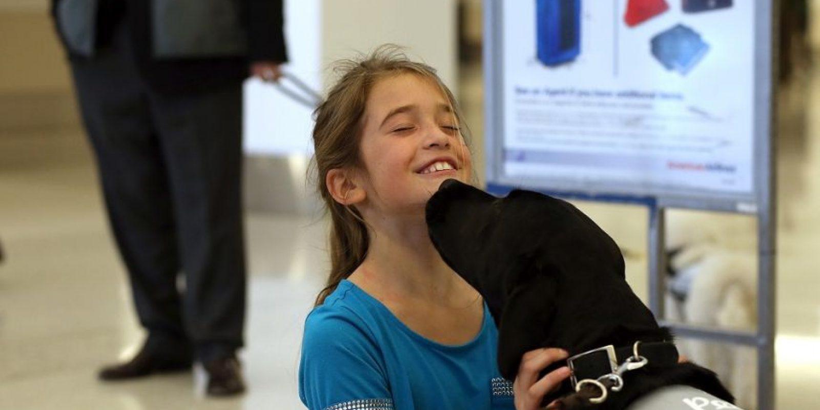 Los perros son utilizados como terapia en algunos hospitales. Las aventuras de Lassie son el mejor ejemplo de l bueno que puede ser tener un perro. Foto: Getty