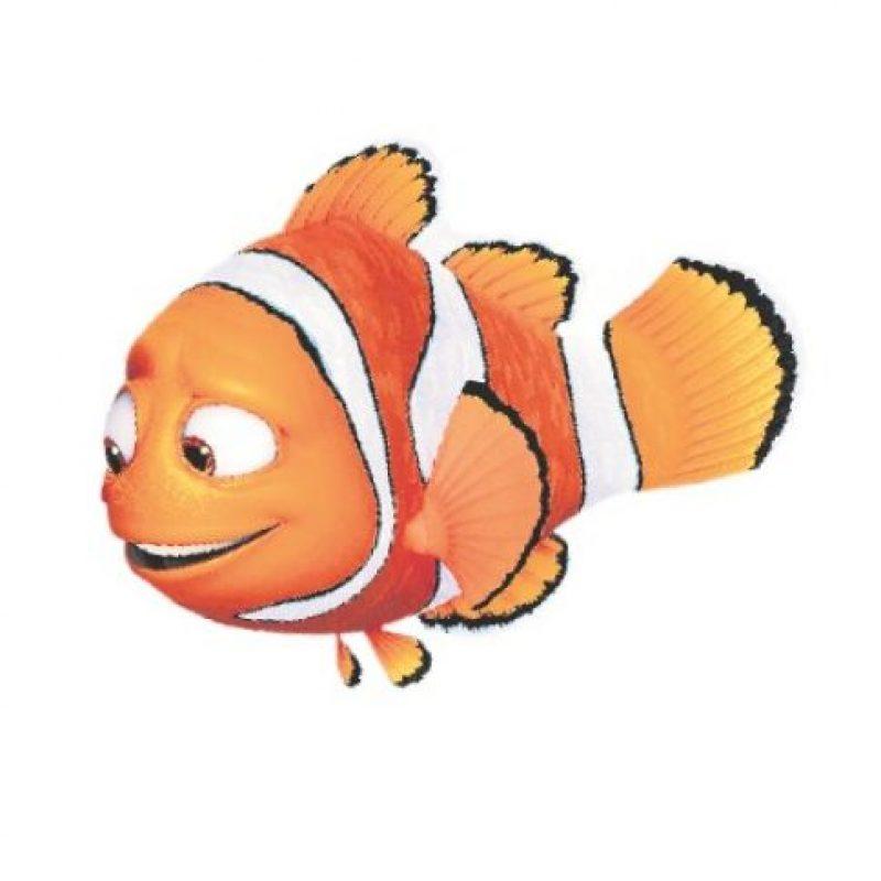 2- Marlin. El papá de Nemo ya sabe lo que es recorrer el peligroso océano. Por eso, le preocupa la idea de acompañar a Dory en la aventura de buscar a su familia. Sin embargo, entiende muy bien lo que siente la despistada pez, pues él también perdió a un ser querido (como le sucedió con Nemo). Así, se decide a ayudarla. El comediante Albert Brooks le presta su voz en inglés. Foto:Fuente externa