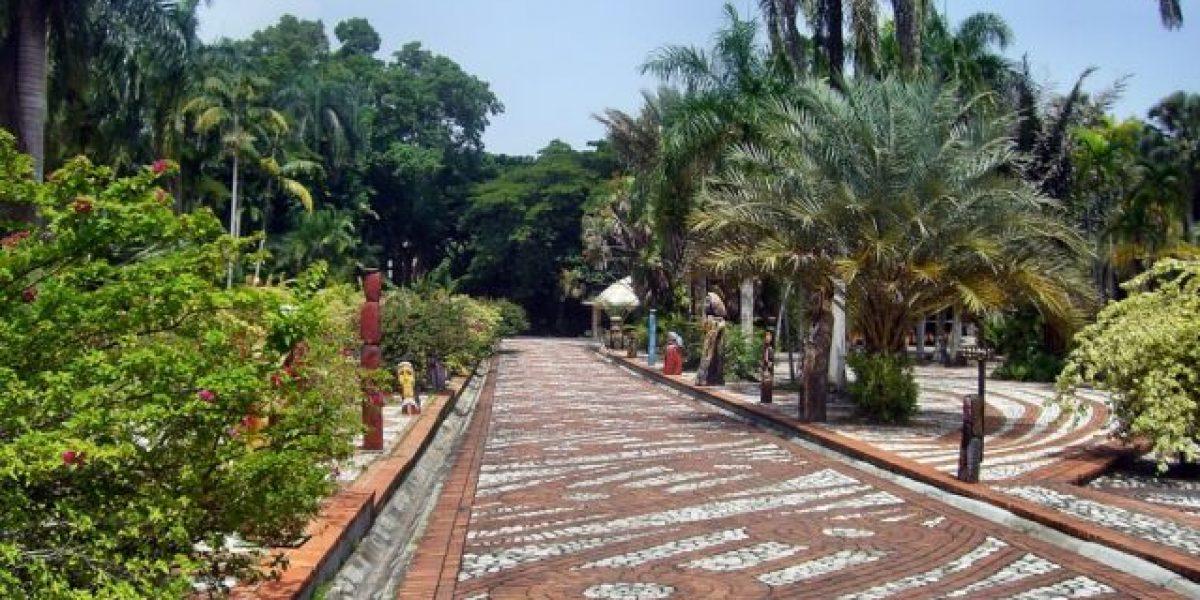 La entrada al jard n bot nico ser gratis los ltimos for Jardin botanico en sevilla