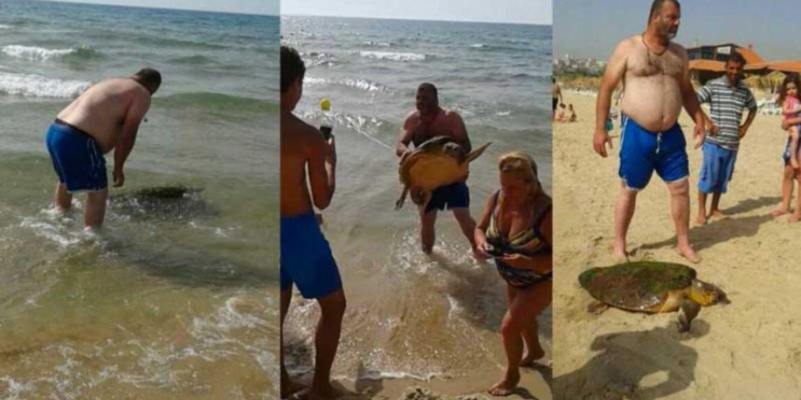 El hecho tuvo lugar en una playa ubicada al sur de Beirut. Foto:Animals Lebanon