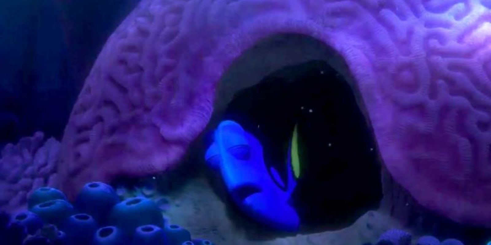 """En ella aparece """"Dory"""" la pez que enamoró a una generación en """"Buscando a Nemo"""" (2003). Foto:Disney Pixar"""