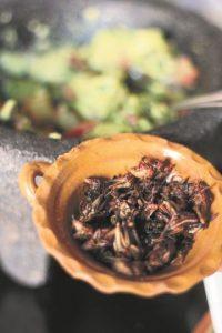 ¡A comer chapulines! ¿Cómo ir a México y no probar sus famosos chapulines? Son criados especialmente para ser consumidos, como la mayor parte de los insectos que se venden en México, como los escamoles, vinguitos, chinicuiles y acociles. Foto:Fuente externa