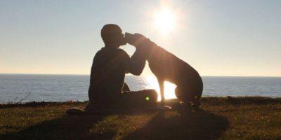 Este hombre realiza un último viaje con su hermosa perra