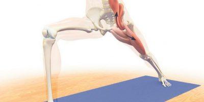 2- Guerrero I. Para alargar el Psoas. Comenzando en posición parada, pies juntos, piernas derechas, pelvis adelante, abdomen contraído, hombros hacia atrás, pecho abierto, manos a los lados. En control, lleva la pierna derecha hacia atrás. Alinea la rodilla izquierda con el tobillo izquierdo y el talón del pie derecho con el talón del pie izquierdo en una línea imaginaria. En la inhalación eleva los brazos y al exhalar baja las caderas, toma conciencia del estiramiento y mantén por cinco respiraciones. Repite el proceso hacia el otro lado. Foto:Fuente externa