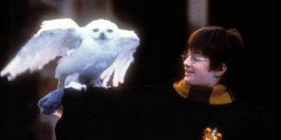 Lectores de Harry Potter rechazan a Donald Trump, según estudio