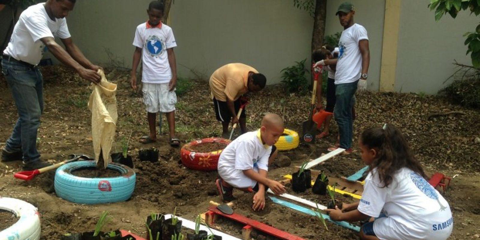 Niños del Smart School de Samsung crearon un huerto escolar. Foto:Fuente externa