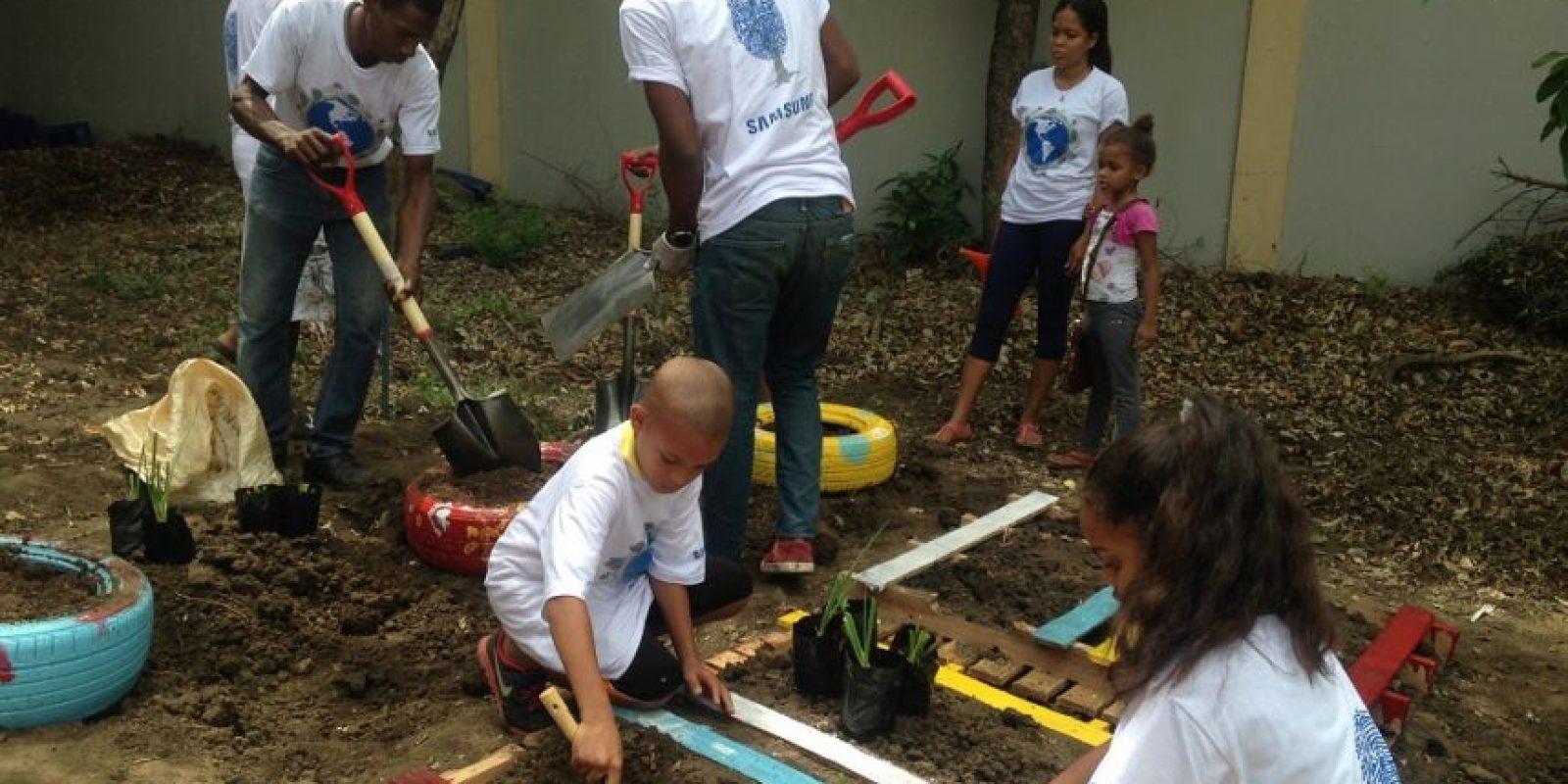 Niños y voluntarios hicieron un huerto escolar. Foto:Fuente externa