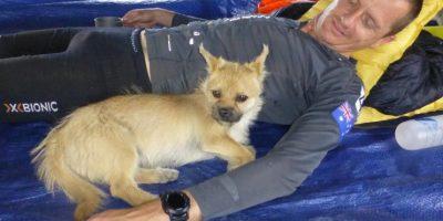 Una perrita que lo siguió durante siete días Foto:Crowdfunder.co.uk/bring-gobi-home