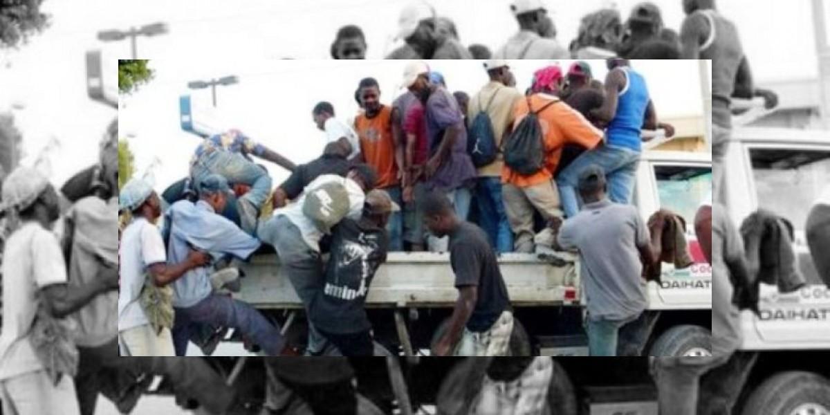 Productores bananeros afirman repatriaciones haitianos afectan sus intereses