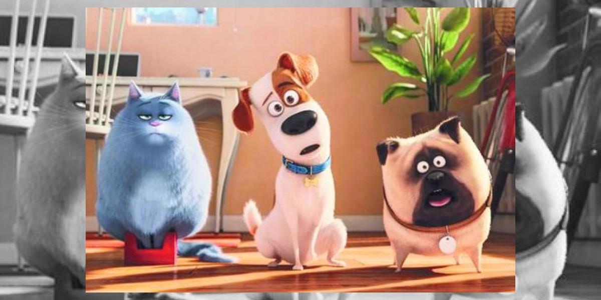 Las mascotas que buscan el reinado de las salas de cine