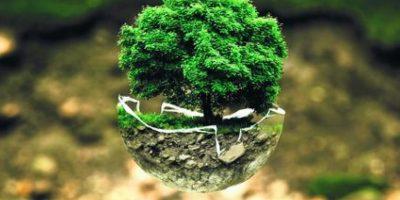 Diseño en favor de la cultura sostenible en Santo Domingo