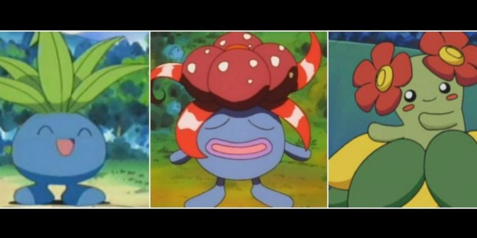 Odish – Gloom – Bellossom. Foto: Pokémon / Nintendo