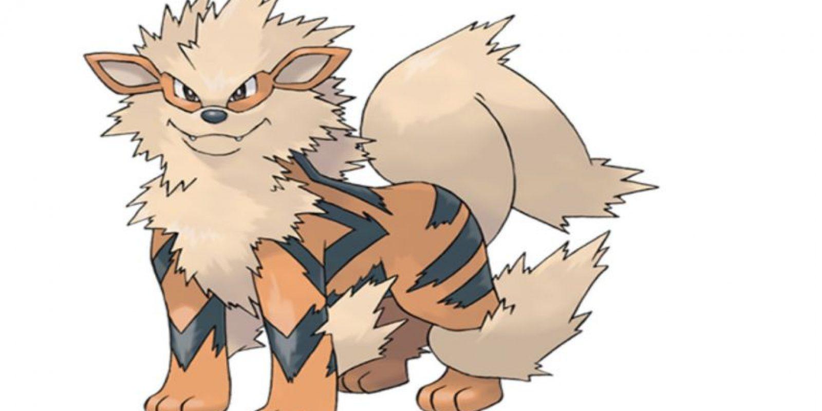 Arcanine Foto:Pokémon