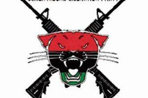 Partido de la Liberación de los Jinetes Negros. (BRLP; por sus siglas en inglés) Foto:Fuente Externa