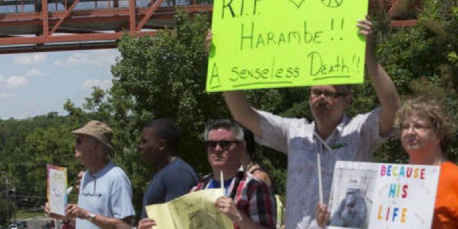 Hasta hubo protestas en el zoológico. Foto:AFP