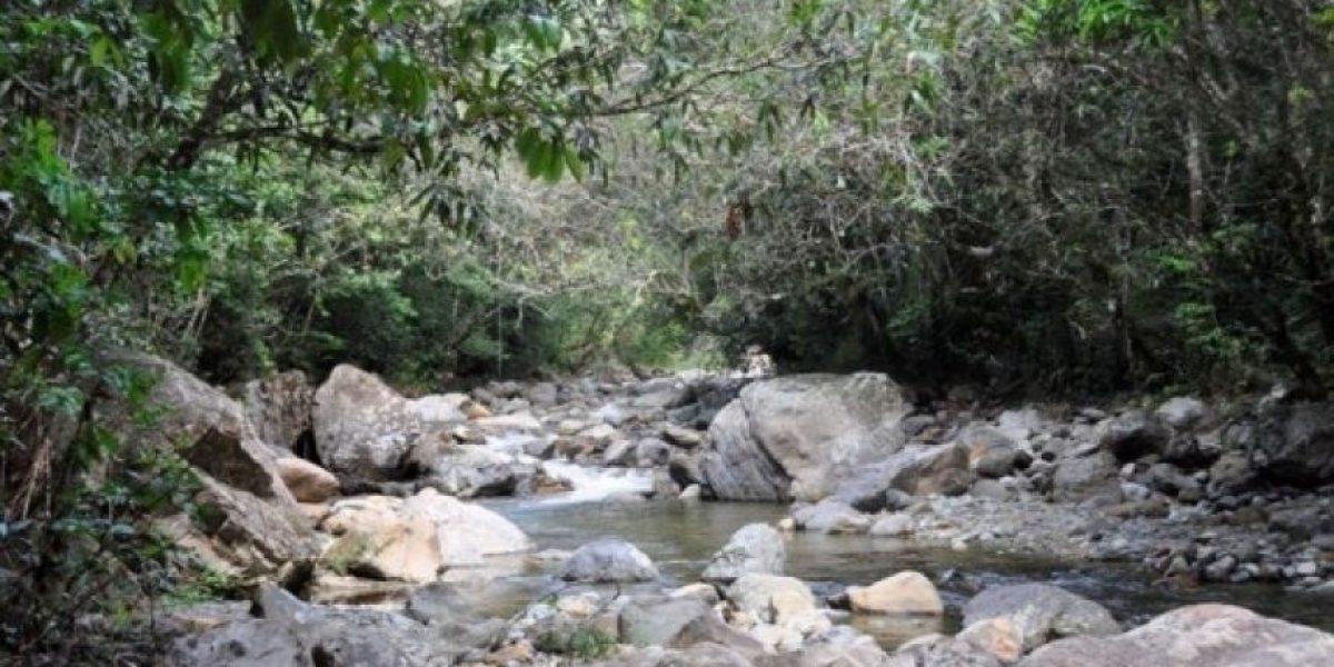 Darán asistencia técnica y financiera al país para mejorar agua y alimentos