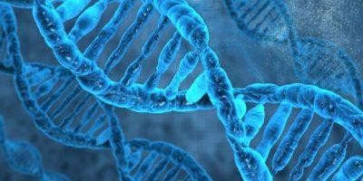 Inician jornada científica internacional sobre genética