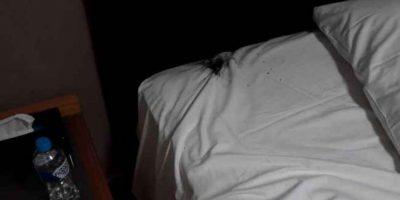 Así quedó la cama. Foto:Imgur/Crushader