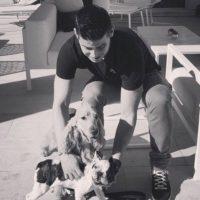 Instagram Foto:James Rodríguez tiene dos perros: un bulldog inglés y un cocker