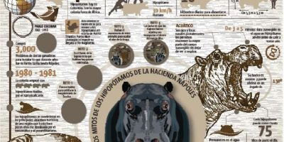 El legado más excéntrico del        narcotráfico en Colombia